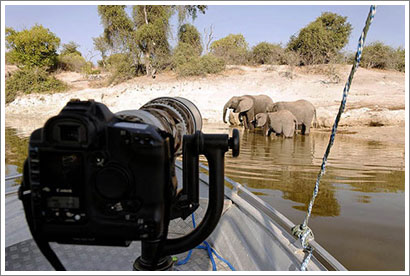 Consejos y equipamiento para un safari por Africa