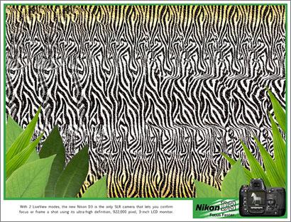 Nikon d3 y 3d :: Zebra