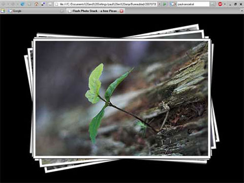 Picasa Flash Photo Stack Gallery