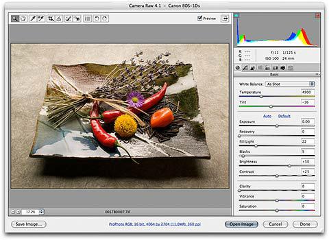 Adobe Camera Raw 4.3.1